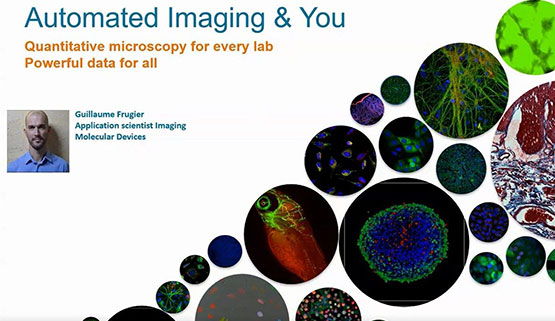 Automated imaging