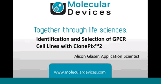 Selection GPCR Cell Line