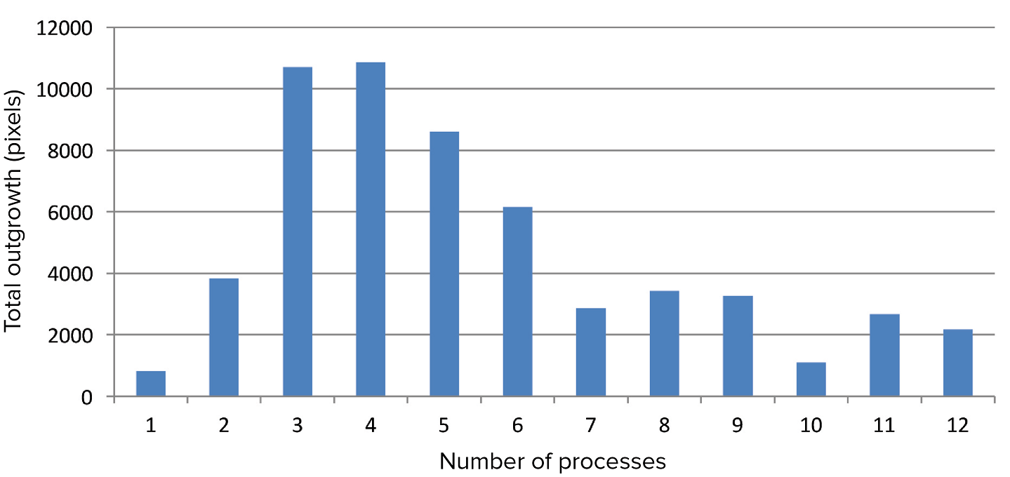 Relationship between total neurite outgrowth and number of processes
