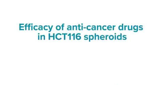 Anti-Cancer Drugs in HCT116 Spheroids